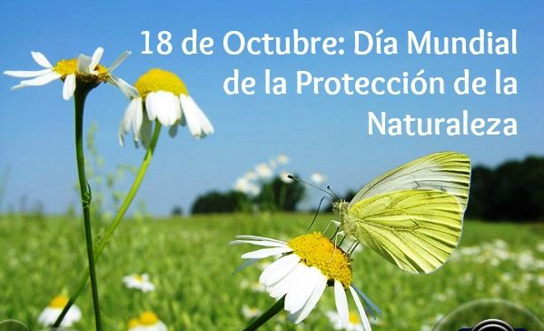 Efemérides: 18 de octubre, Día Mundial de la Protección de la Naturaleza