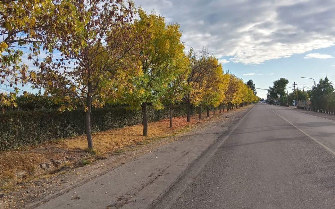 Martes con temperaturas agradables en la provincia de Mendoza