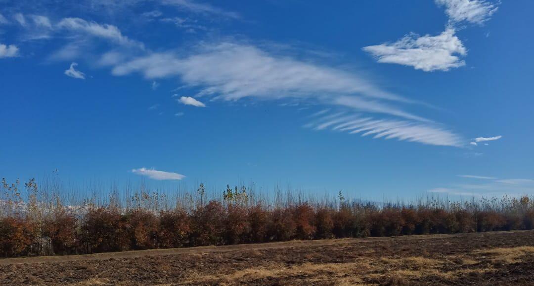 Viernes con heladas parciales y vientos leves del noreste