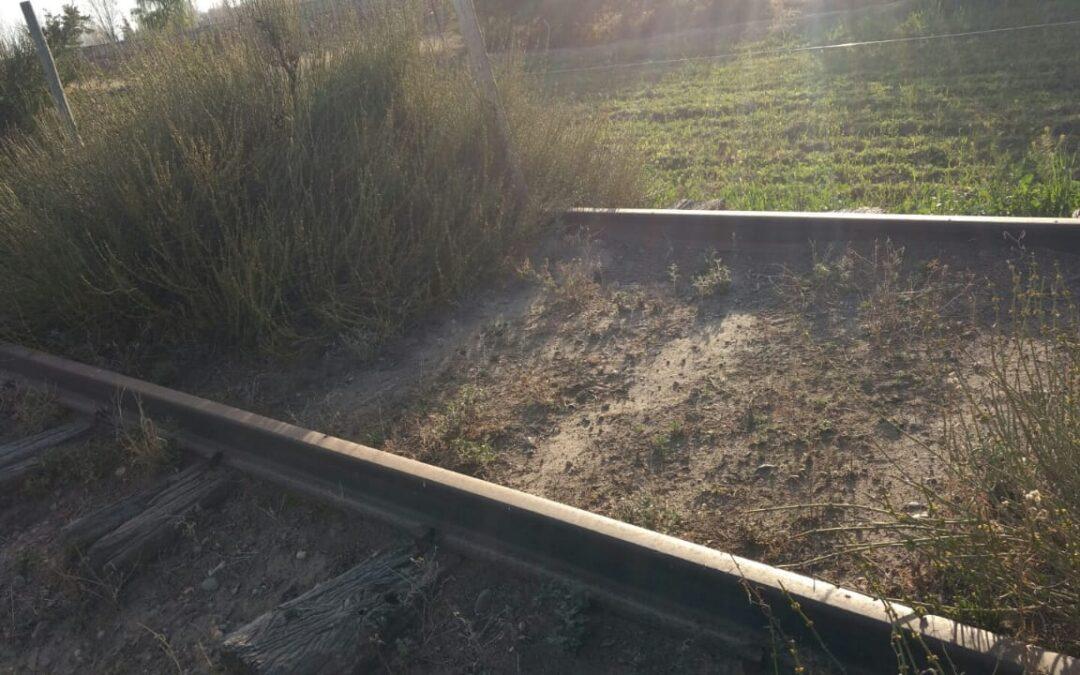 La recuperación de las vías de los trenes marca presencia en la agenda política mendocina