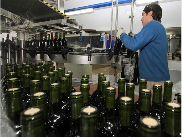 Los vinos fraccionados crecieron un 13,4 % en volumen y los graneles bajaron un 45% en agosto