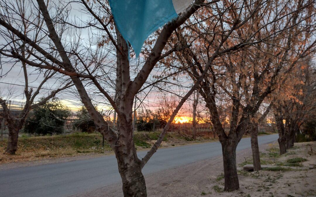 Lunes: habrá tiempo bueno y ascenso de la temperatura en la provincia de Mendoza